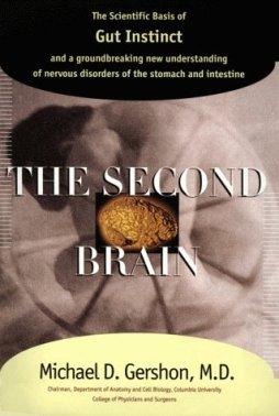 the second brain