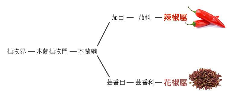 Blog圖表.001