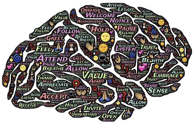brain-744207_640