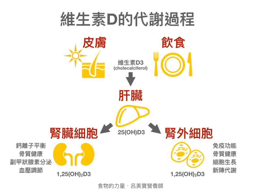 流感免疫課程 呂美寶 摘錄 2.002